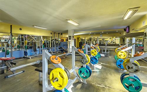 Fitness Titan Musagenitsa